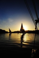 Feluccas on Nile River